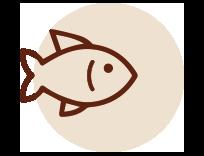 Packaging per il pesce